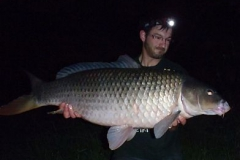 Langgestreckter Donaufisch von 27 Pfund Gewicht