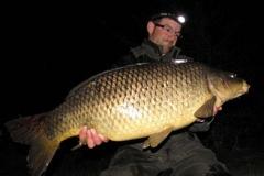 Knapp 30er Donaufisch