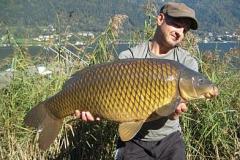 Oktober-goldener 17 Pfund Schuppi