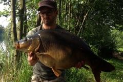 26 Pfund Spiegelschweinchen