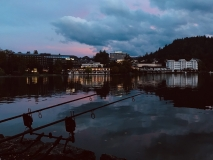 bled-scaled