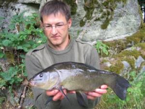 schleie-10.6.-43cm-1.25kg-FischB